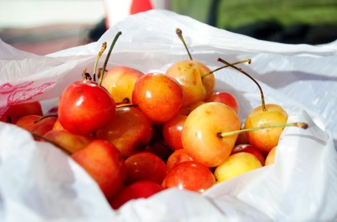 It's cherry season in Oregon!