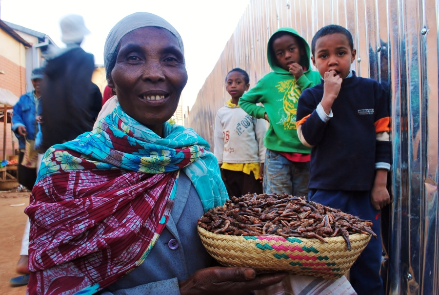 Malagasy Woman with Locusts