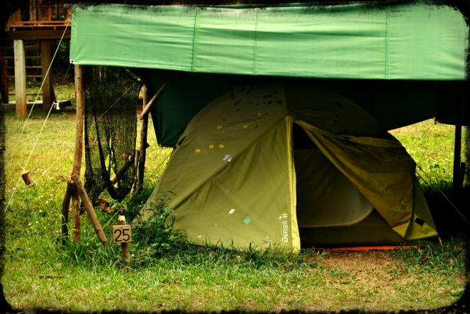 Green climbers home tent